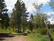 Skull Creek Campground 1