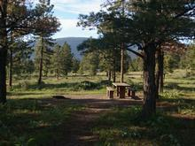 Canyon Rim Campground 5