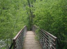 Dry Fork Flume Trail Bridge